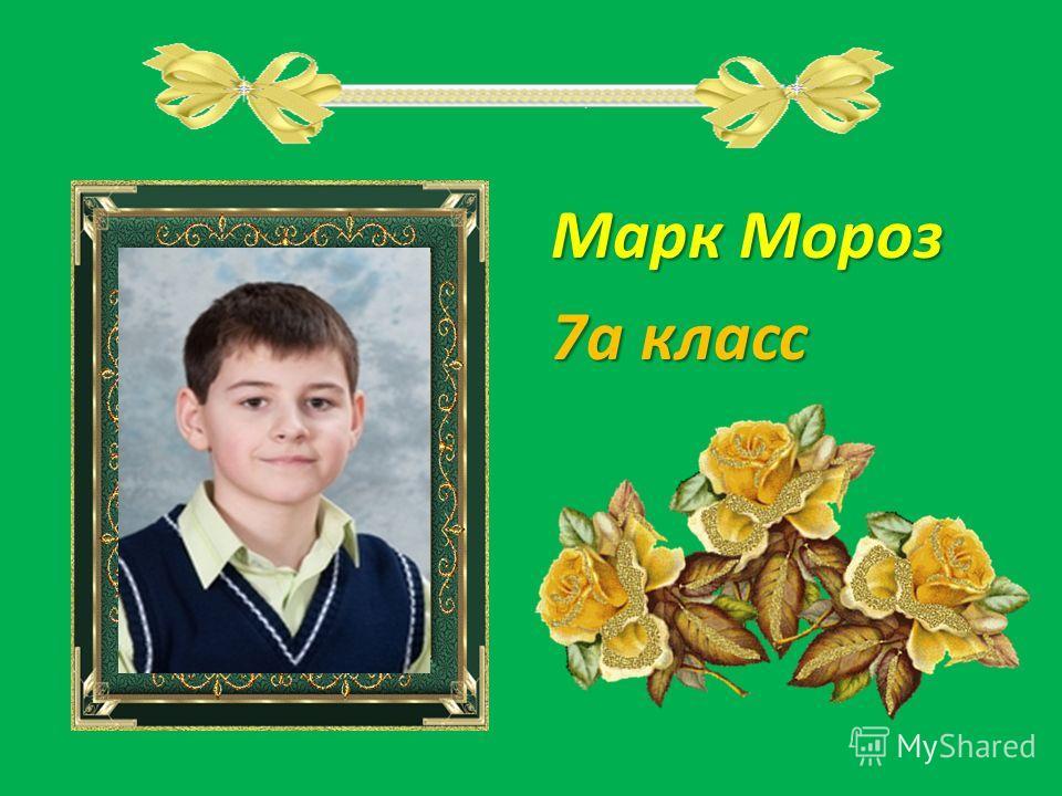 Марк Мороз 7а класс