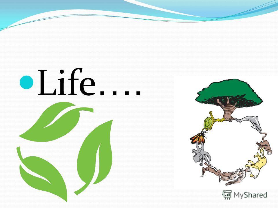 Life ….