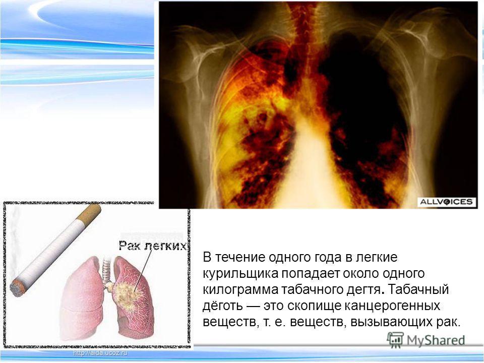 В течение одного года в легкие курильщика попадает около одного килограмма табачного дегтя. Табачный дёготь это скопище канцерогенных веществ, т. е. веществ, вызывающих рак..