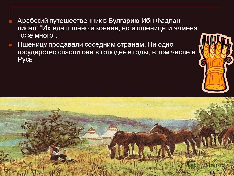 Арабский путешественник в Булгарию Ибн Фадлан писал: Их еда п шено и конина, но и пшеницы и ячменя тоже много. Пшеницу продавали соседним странам. Ни одно государство спасли они в голодные годы, в том числе и Русь