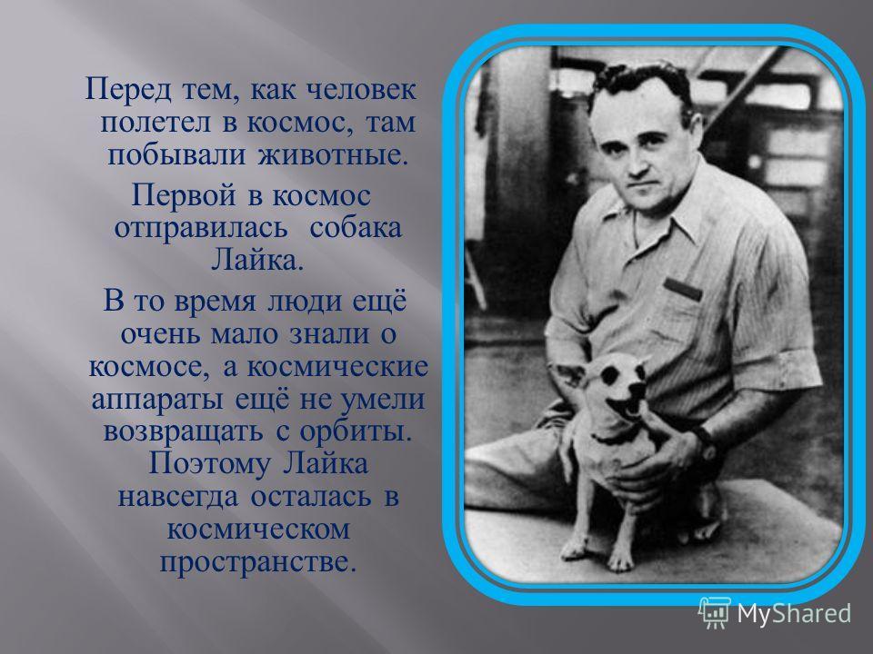 Перед тем, как человек полетел в космос, там побывали животные. Первой в космос отправилась собака Лайка. В то время люди ещё очень мало знали о космосе, а космические аппараты ещё не умели возвращать с орбиты. Поэтому Лайка навсегда осталась в косми