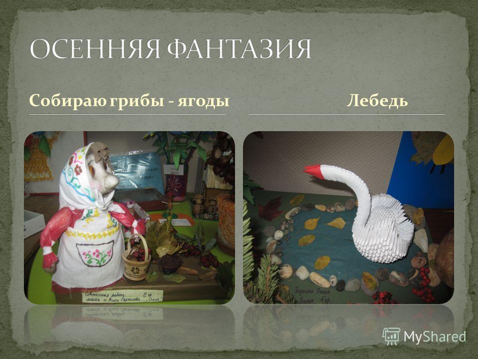 Собираю грибы - ягоды Лебедь