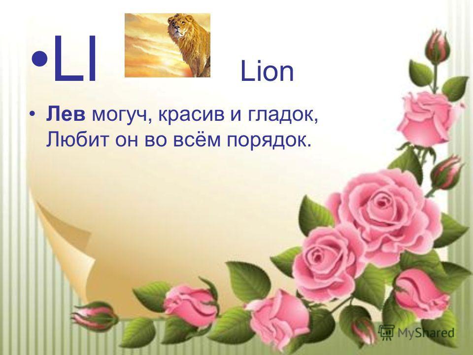 Ll Lion Лев могуч, красив и гладок, Любит он во всём порядок.
