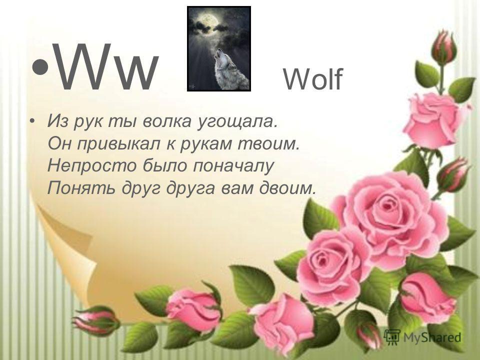 Ww Wolf Из рук ты волка угощала. Он привыкал к рукам твоим. Непросто было поначалу Понять друг друга вам двоим.