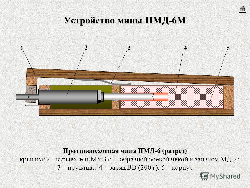 Устройство мины ПМД-6М Противопехотная мина ПМД-6 (разрез) 1 - крышка; 2 - взрыватель МУВ с Т-образной боевой чекой и запалом МД-2; 3 – пружина; 4 – заряд ВВ (200 г); 5 – корпус1 2 354