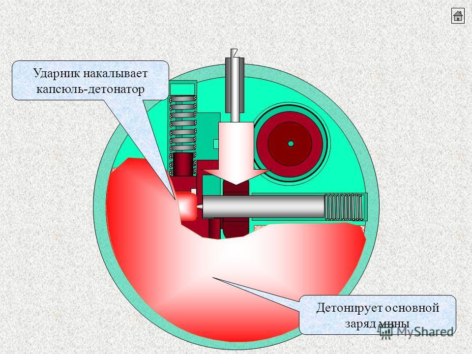 Ударник накалывает капсюль-детонатор Детонирует основной заряд мины