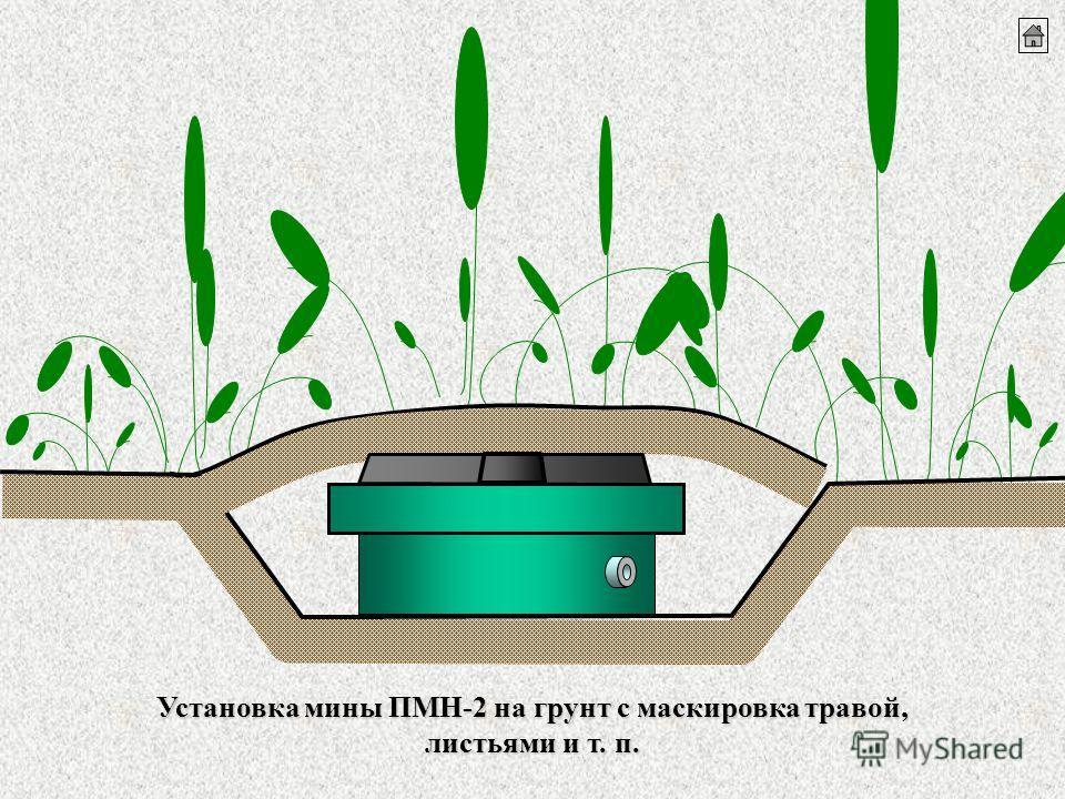 Установка мины ПМН-2 на грунтс маскировка травой, листьями и т. п. Установка мины ПМН-2 на грунт с маскировка травой, листьями и т. п.