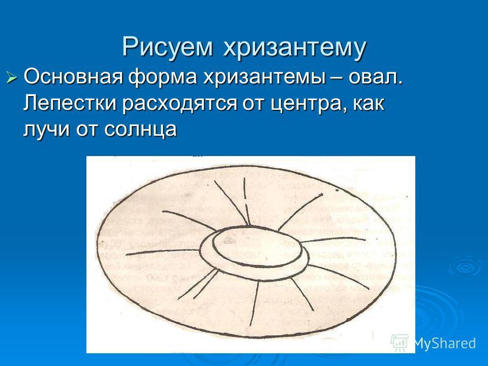 Рисуем хризантему Основная форма хризантемы – овал. Лепестки расходятся от центра, как лучи от солнца Основная форма хризантемы – овал. Лепестки расходятся от центра, как лучи от солнца