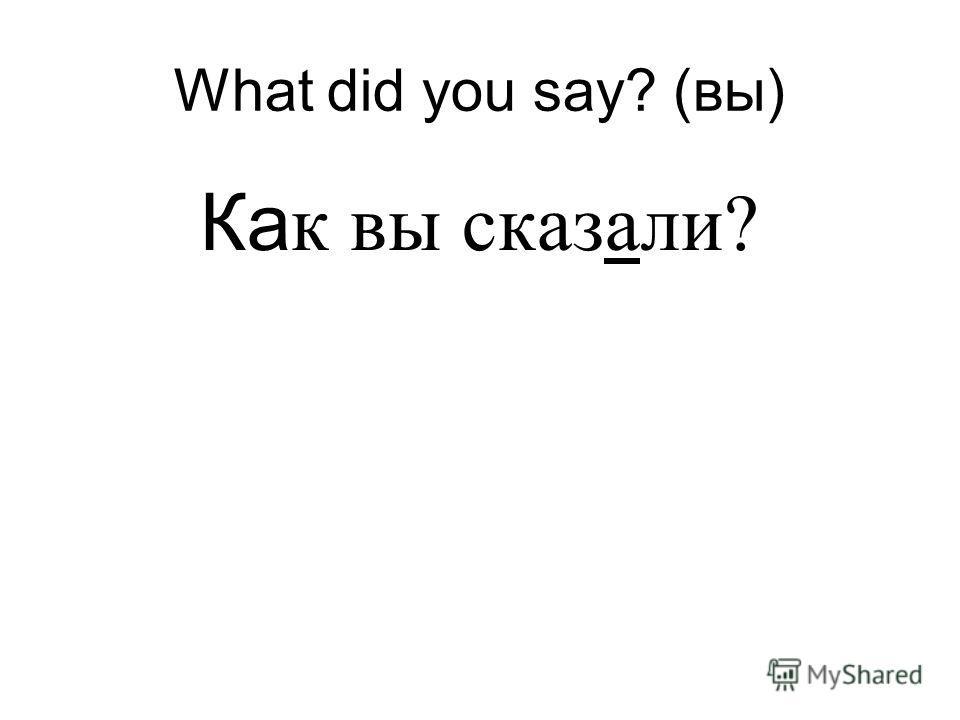 What did you say? (вы) Ка к вы сказали?