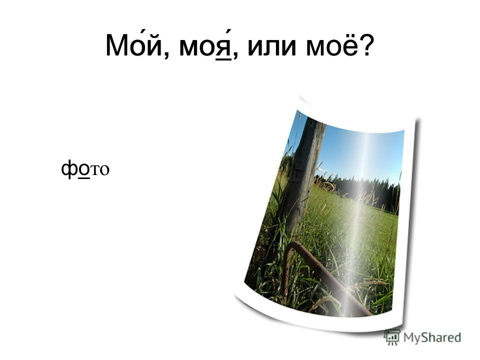 Мо́й, моя́, или моё? фо то Мой, моя, или моё?