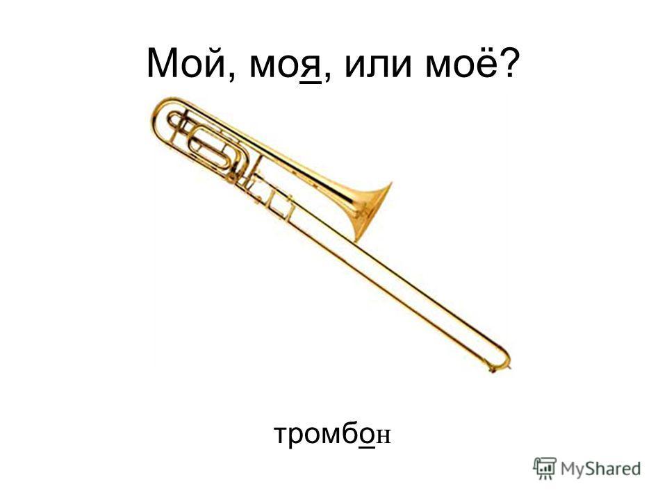 тромбо н Мой, моя, или моё?