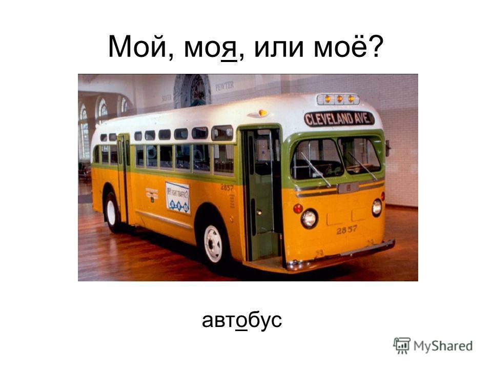 автобус Мой, моя, или моё?