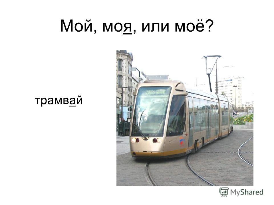 трамвай Мой, моя, или моё?