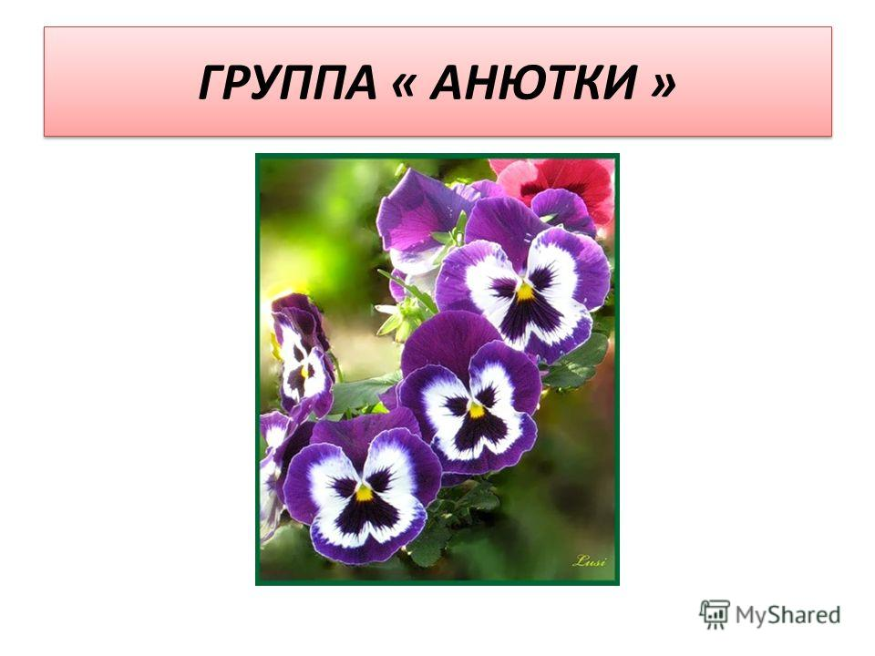 ГРУППА « АНЮТКИ »