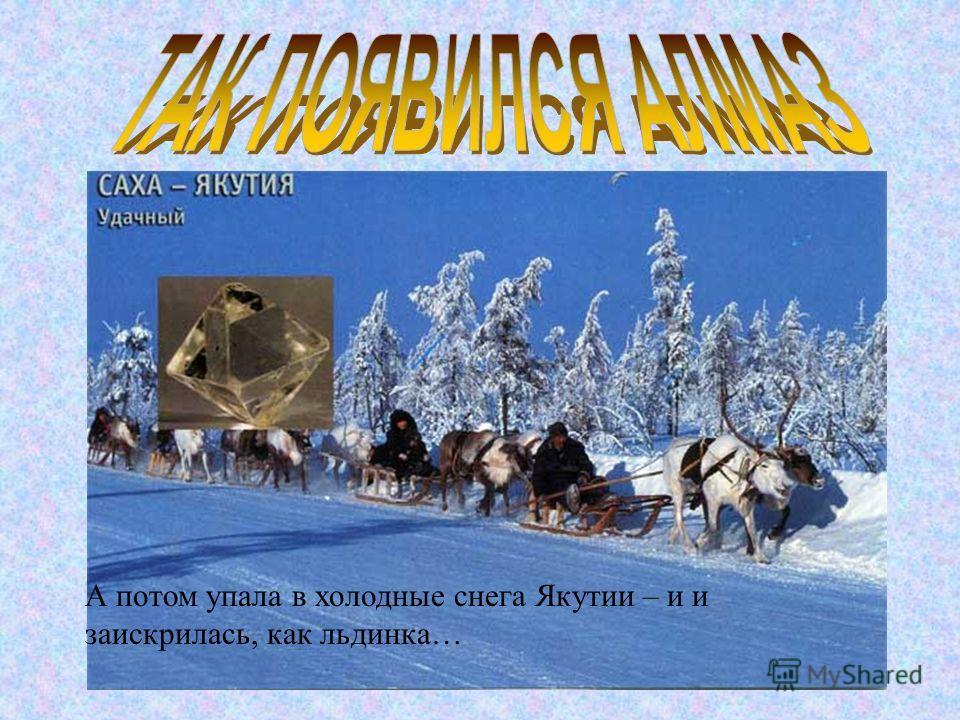 А потом упала в холодные снега Якутии – и и заискрилась, как льдинка…