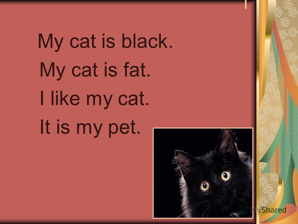 I My cat is black. My cat is fat. I like my cat. It is my pet.