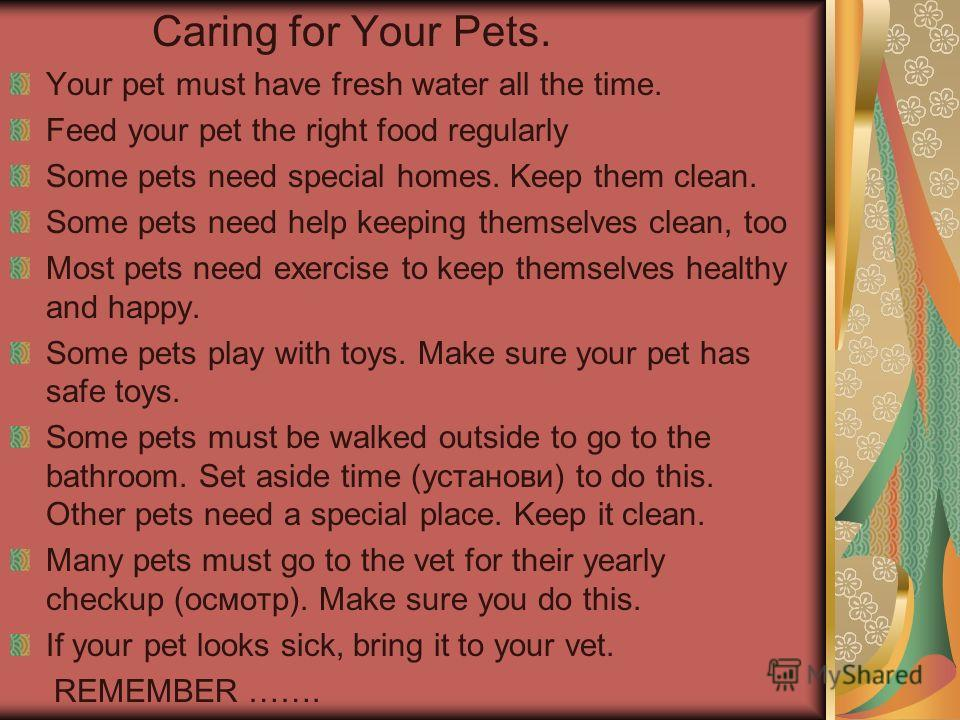 Caring for Your Pets. Your pet must have fresh water all the time. Feed your pet the right food regularly Some pets need special homes. Keep them clean. Some pets need help keeping themselves clean, too Most pets need exercise to keep themselves heal