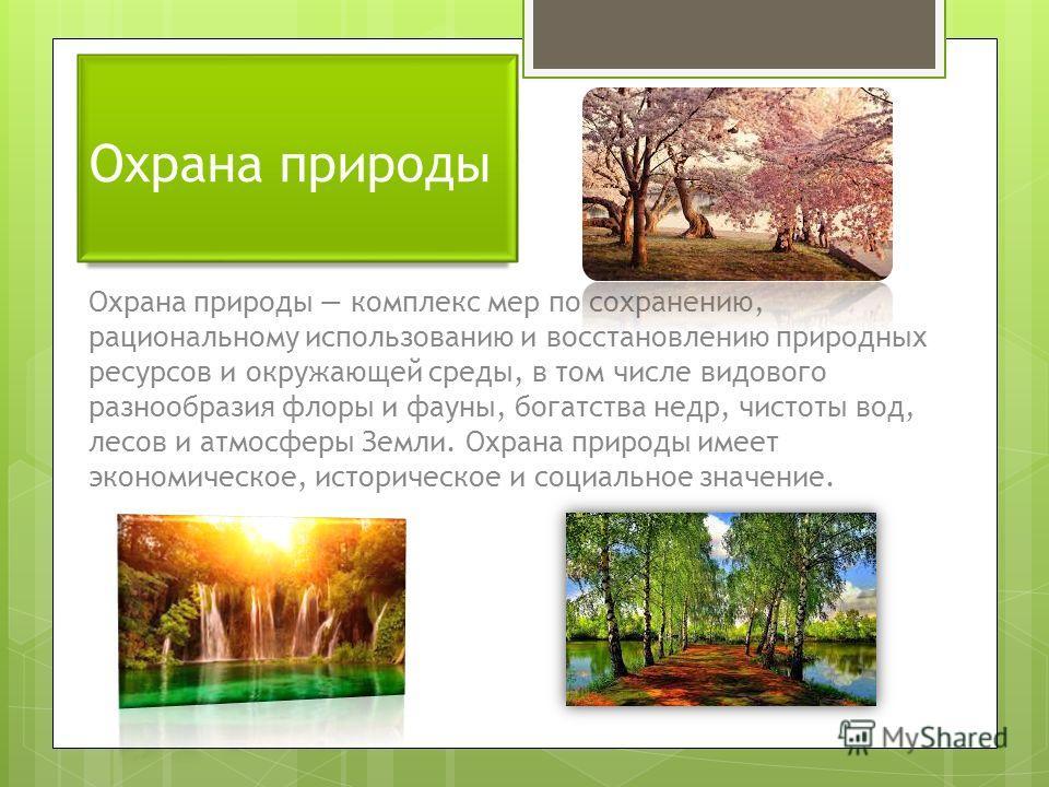 Охрана природы Охрана природы комплекс мер по сохранению, рациональному использованию и восстановлению природных ресурсов и окружающей среды, в том числе видового разнообразия флоры и фауны, богатства недр, чистоты вод, лесов и атмосферы Земли. Охран