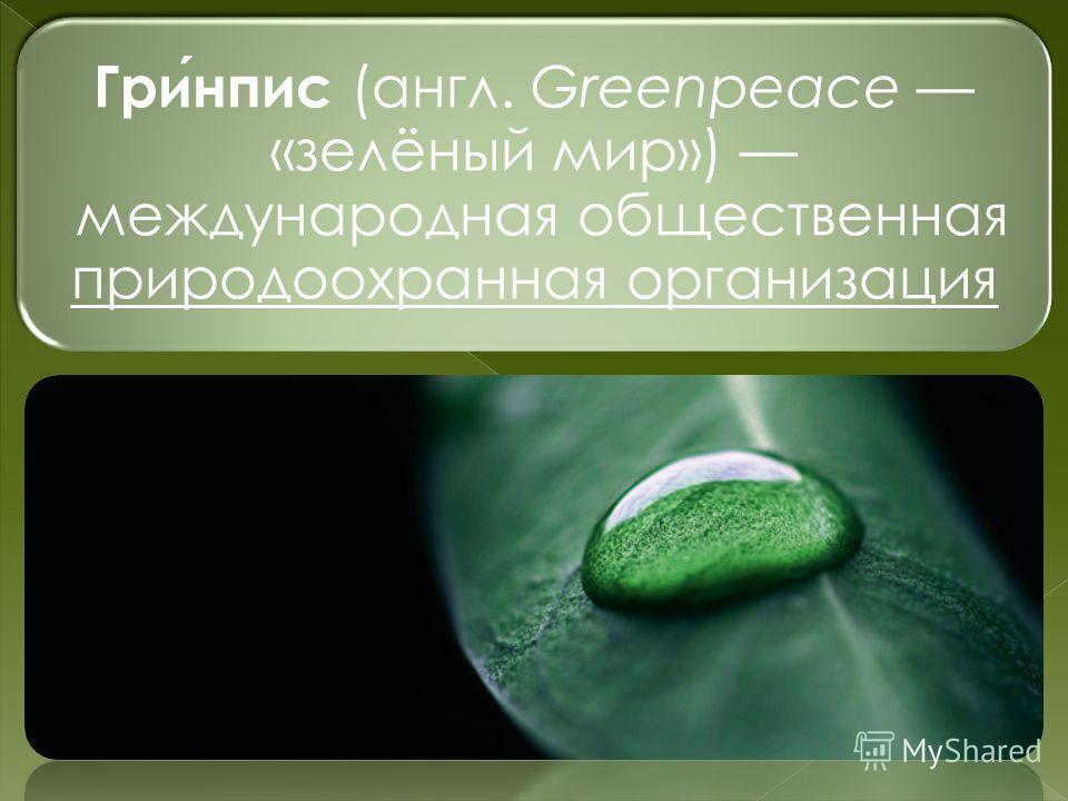Гринпис (англ. Greenpeace «зелёный мир») международная общественная природоохранная организация