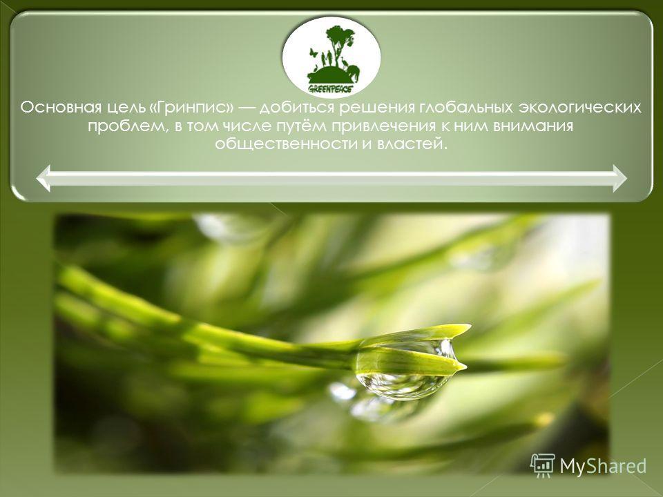Основная цель «Гринпис» добиться решения глобальных экологических проблем, в том числе путём привлечения к ним внимания общественности и властей.
