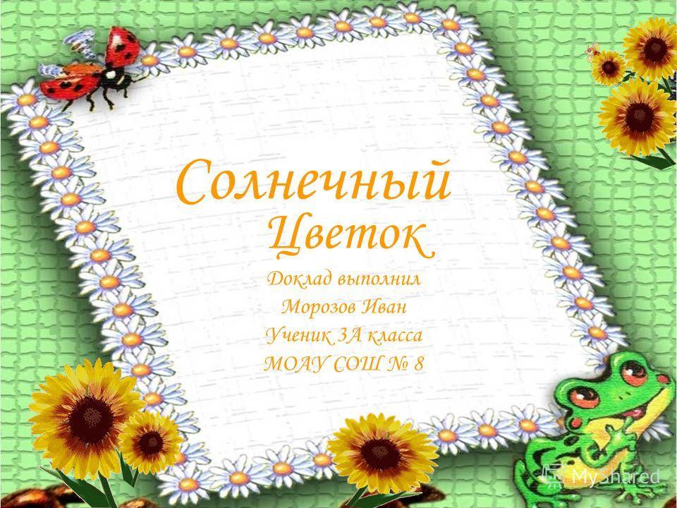 Солнечный Цветок Доклад выполнил Морозов Иван Ученик 3А класса МОАУ СОШ 8