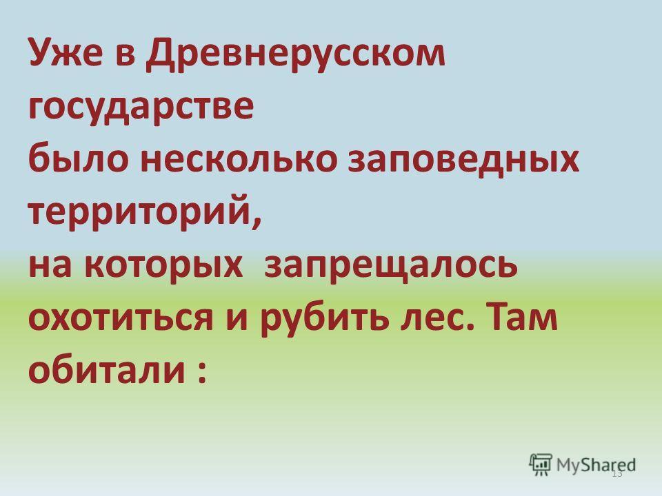 13 Уже в Древнерусском государстве было несколько заповедных территорий, на которых запрещалось охотиться и рубить лес. Там обитали :