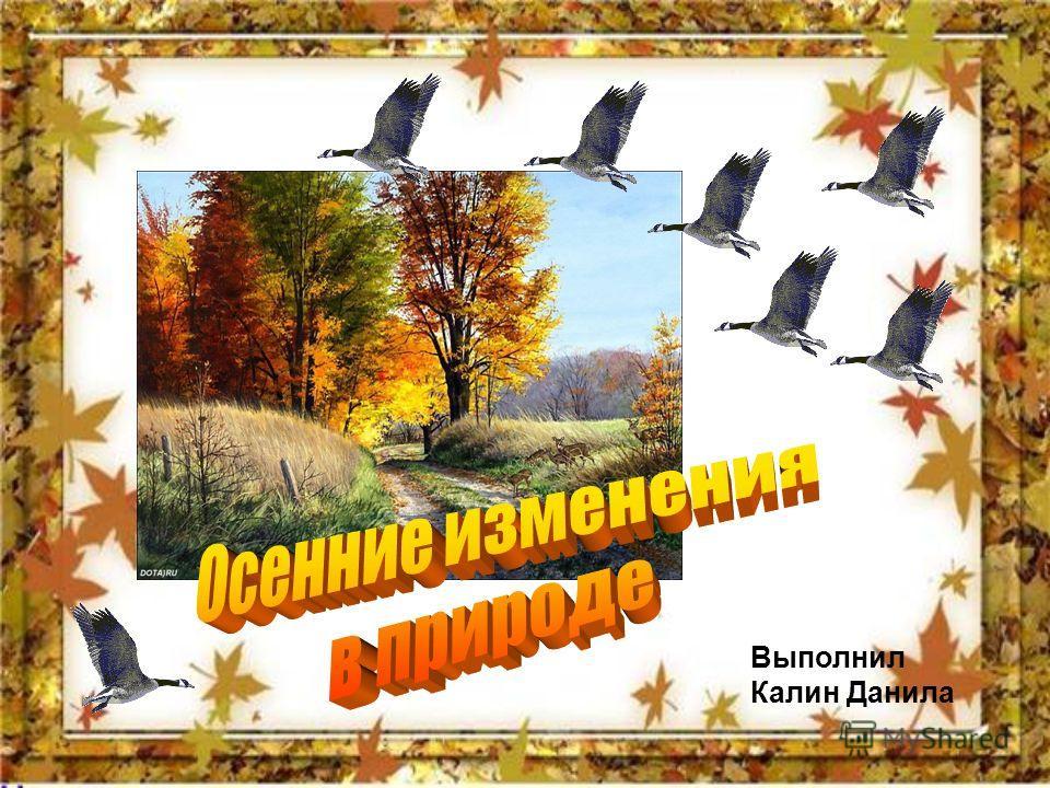 Выполнил Калин Данила