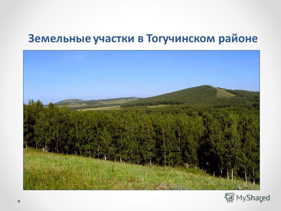Земельные участки в Тогучинском районе