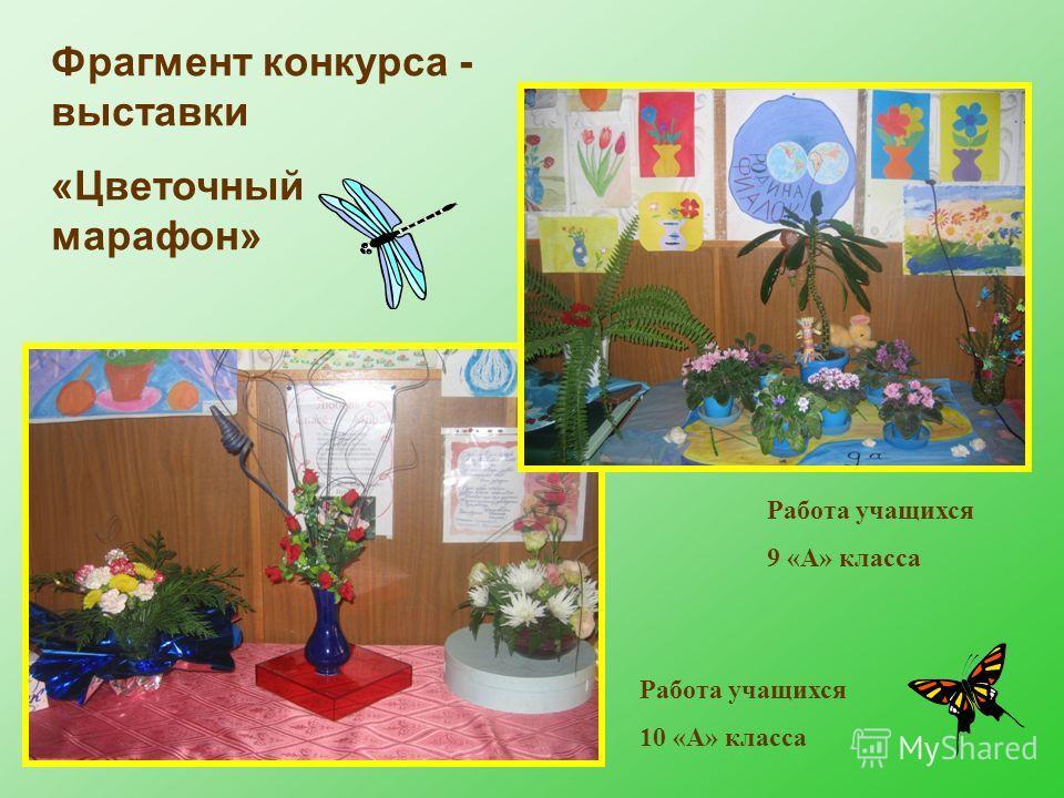 Фрагмент конкурса - выставки «Цветочный марафон» Работа учащихся 9 «А» класса Работа учащихся 10 «А» класса