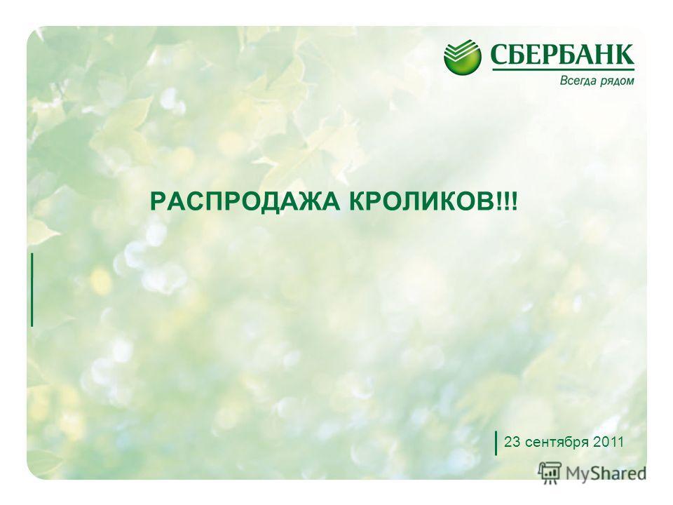 1 РАСПРОДАЖА КРОЛИКОВ!!! 23 сентября 2011