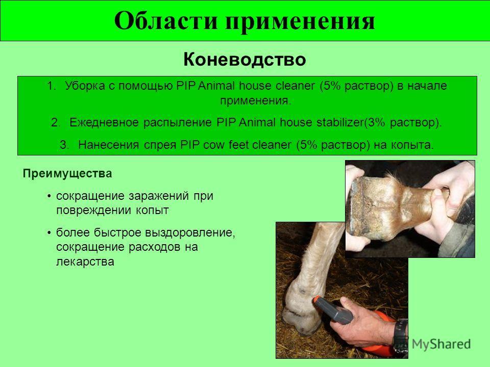 Области применения Коневодство Преимущества сокращение заражений при повреждении копыт более быстрое выздоровление, сокращение расходов на лекарства 1.Уборка с помощью PIP Animal house cleaner (5% раствор) в начале применения. 2.Ежедневное распыление