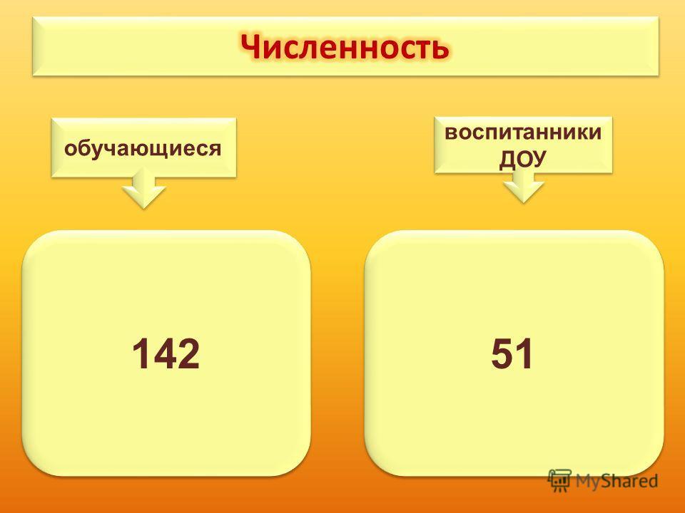 142 51 обучающиеся воспитанники ДОУ