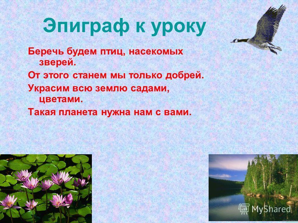 Эпиграф к уроку Беречь будем птиц, насекомых зверей. От этого станем мы только добрей. Украсим всю землю садами, цветами. Такая планета нужна нам с вами.