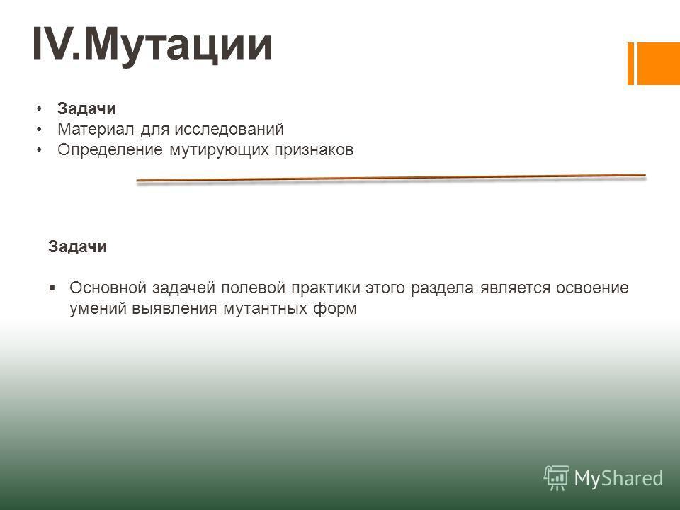 IV.Мутации Задачи Материал для исследований Определение мутирующих признаков Задачи Основной задачей полевой практики этого раздела является освоение умений выявления мутантных форм