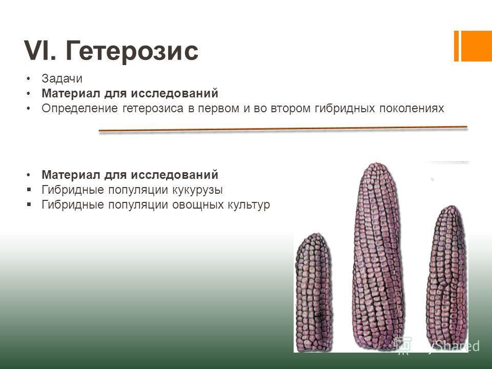 VI. Гетерозис Задачи Материал для исследований Определение гетерозиса в первом и во втором гибридных поколениях Материал для исследований Гибридные популяции кукурузы Гибридные популяции овощных культур