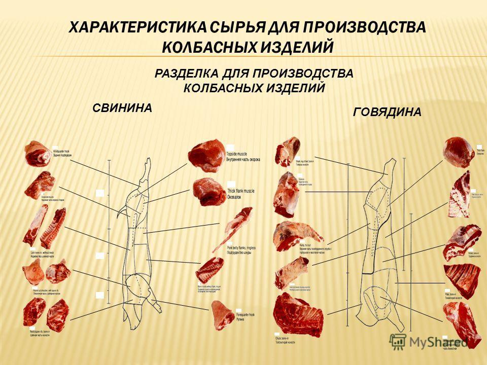 Картинки по запросу сырье для колбасные изделия
