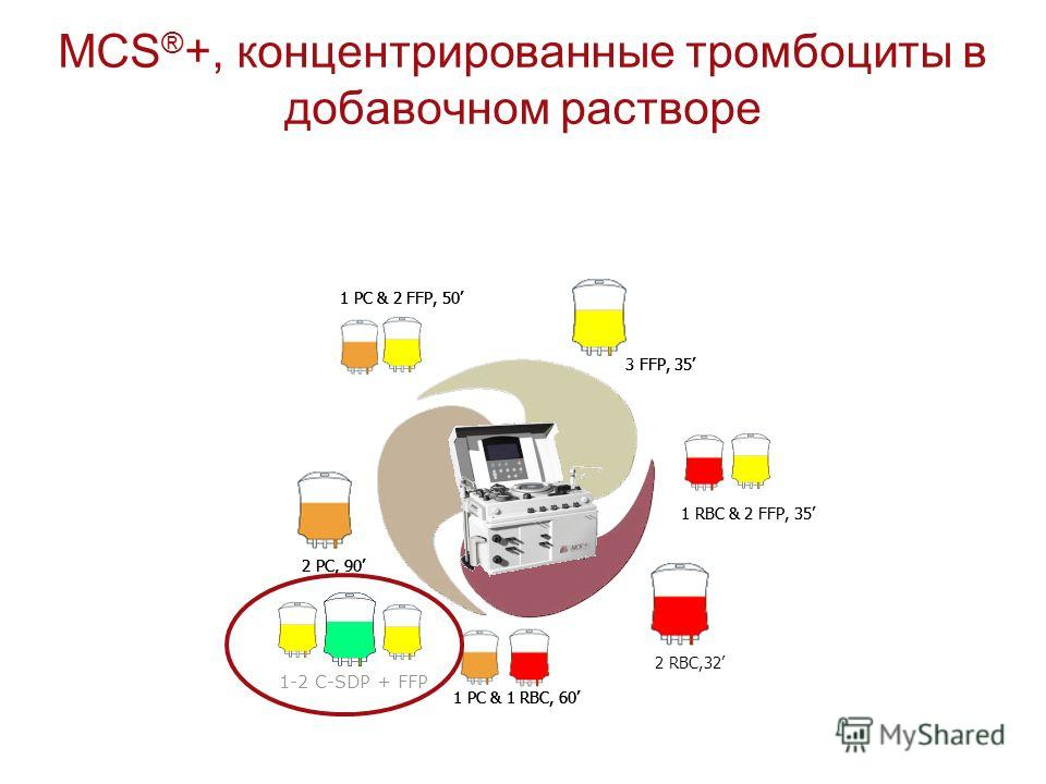 MCS ® +, концентрированные тромбоциты в добавочном растворе 1 RBC & 2 FFP, 35 1 PC & 2 FFP, 50 1 PC & 1 RBC, 60 2 PC, 90 3 FFP, 35 1 RBC & 2 FFP, 35 1 PC & 2 FFP, 50 2 RBC,32 1 PC & 1 RBC, 60 2 PC, 90 3 FFP, 35 1 PC & 2 FFP, 50 1 PC & 1 RBC, 60 2 PC,