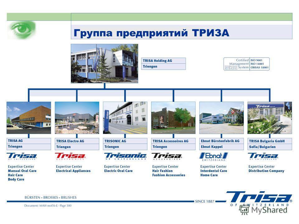 Группа предприятий ТРИЗА