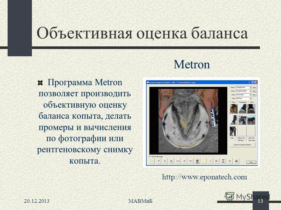 20.12.2013МАВМиБ13 Объективная оценка баланса Программа Metron позволяет производить объективную оценку баланса копыта, делать промеры и вычисления по фотографии или рентгеновскому снимку копыта. http://www.eponatech.com Metron