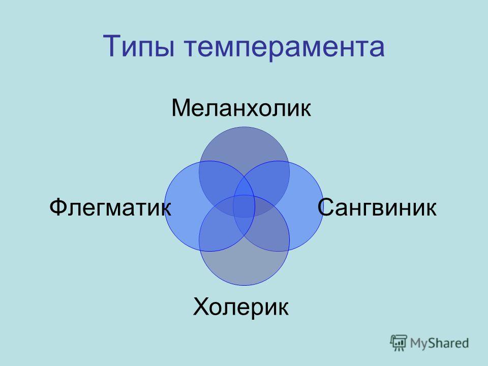 Типы темперамента Меланхолик Сангвиник Холерик Флегматик