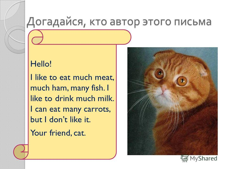 Догадайся, кто автор этого письма Hello! I like to eat much meat, much ham, many fish. I like to drink much milk. I can eat many carrots, but I dont like it. Your friend, cat.