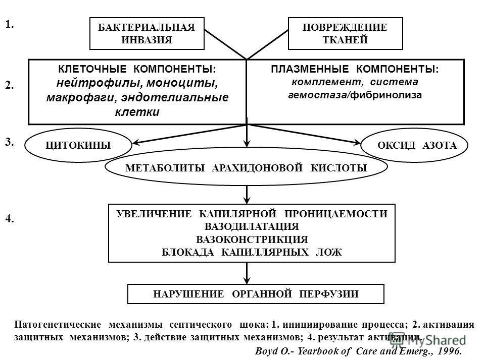 Сокращённый отчёт о первых опытах применения Алтеко LPS-адсорбции у больных с сепсисом В России (г.Москва) ноябрь 2006 – март 2007