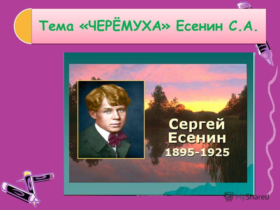 Тема «ЧЕРЁМУХА» Есенин С.А.