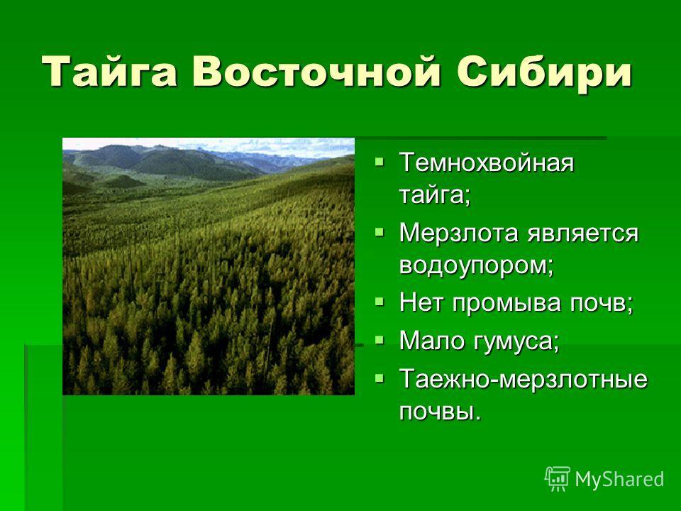 Тайга Восточной Сибири Темнохвойная тайга; Темнохвойная тайга; Мерзлота является водоупором; Мерзлота является водоупором; Нет промыва почв; Нет промыва почв; Мало гумуса; Мало гумуса; Таежно-мерзлотные почвы. Таежно-мерзлотные почвы.