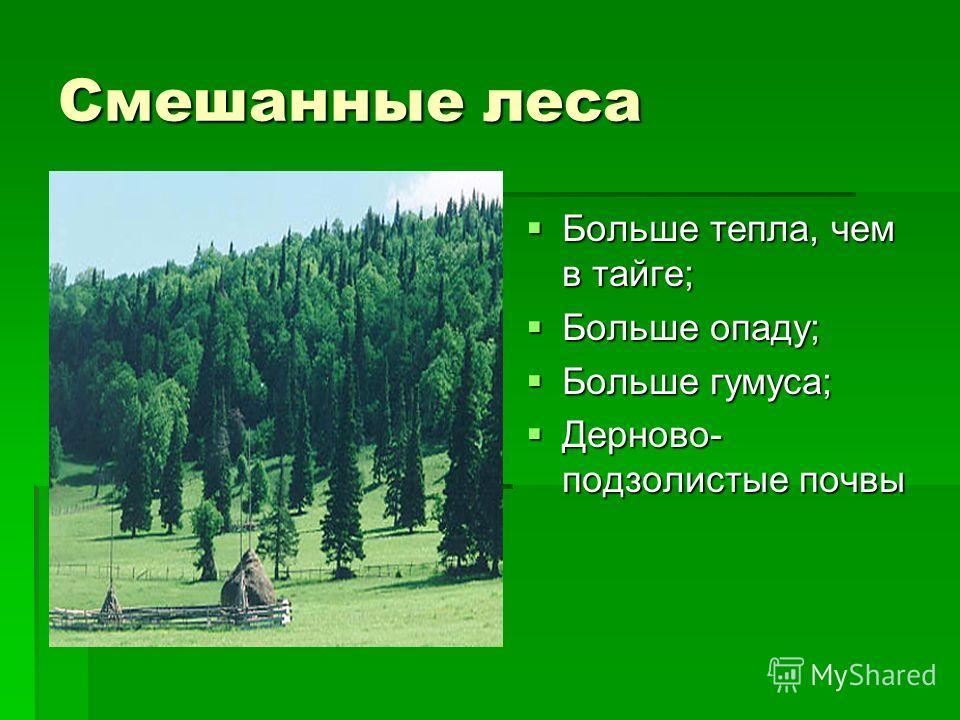 Смешанные леса Больше тепла, чем в тайге; Больше тепла, чем в тайге; Больше опаду; Больше опаду; Больше гумуса; Больше гумуса; Дерново- подзолистые почвы Дерново- подзолистые почвы