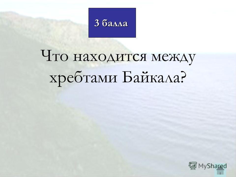 Что находится между хребтами Байкала? 3 балла 3 балла