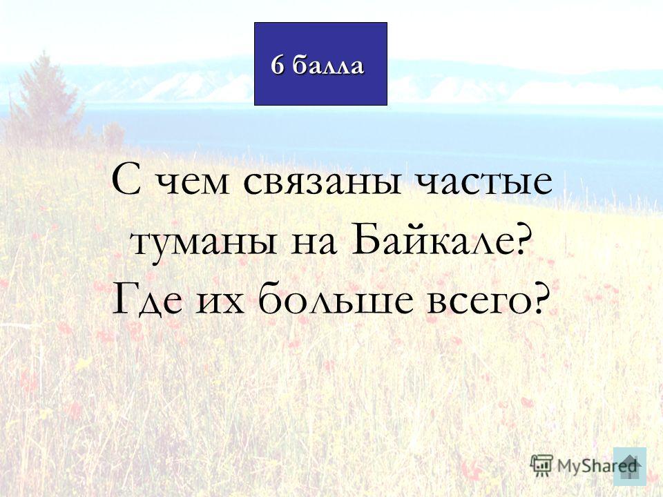 6 балла 6 балла С чем связаны частые туманы на Байкале? Где их больше всего?