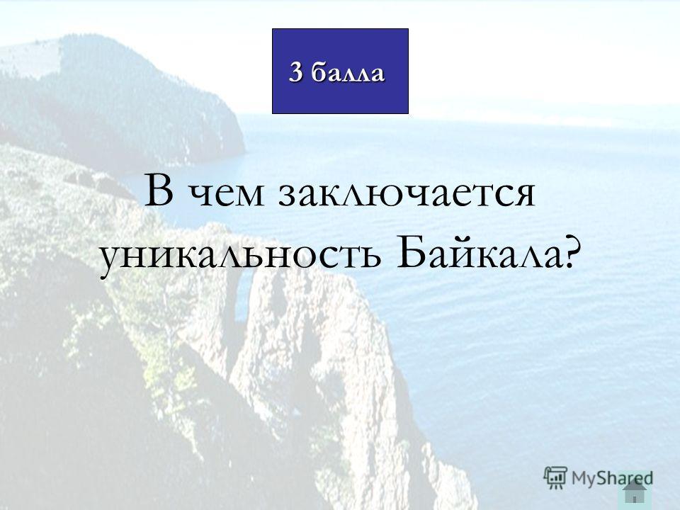 В чем заключается уникальность Байкала? 3 балла 3 балла