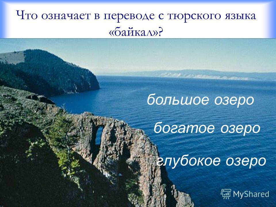 Что означает в переводе с тюрского языка «байкал»? глубокое озеро большое озеро богатое озеро