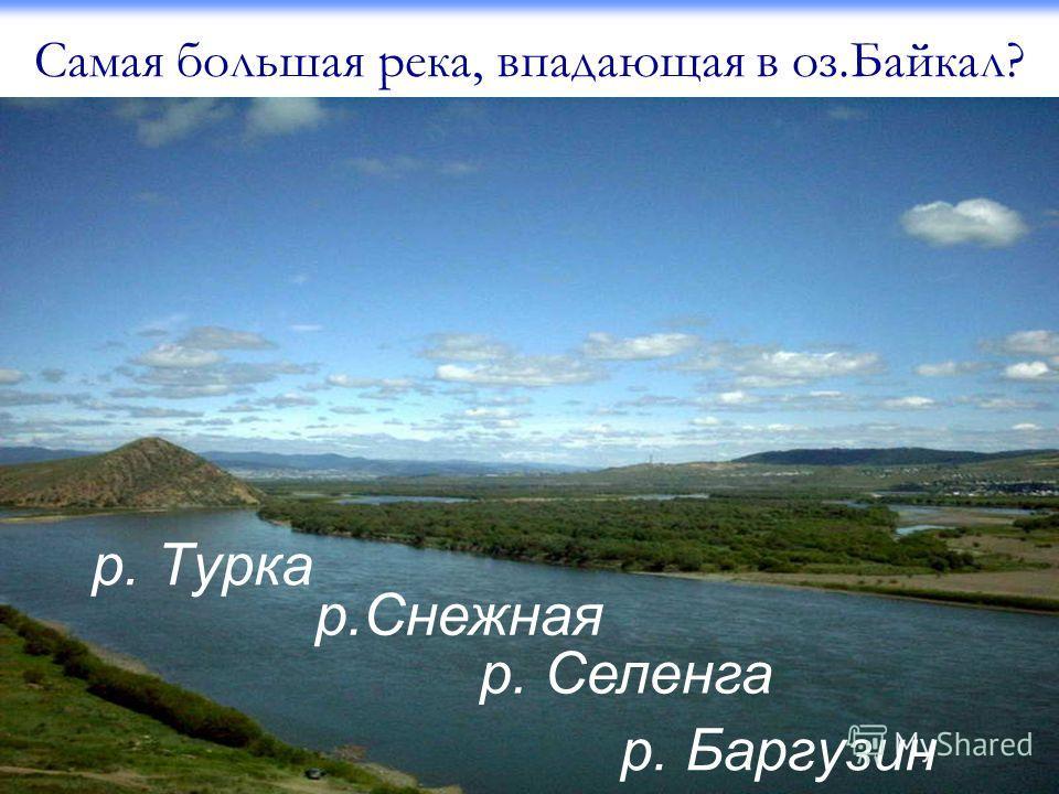 Самая большая река, впадающая в оз.Байкал? р. Турка р.Снежная р. Селенга р. Баргузин